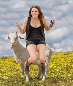 Miley on a goat